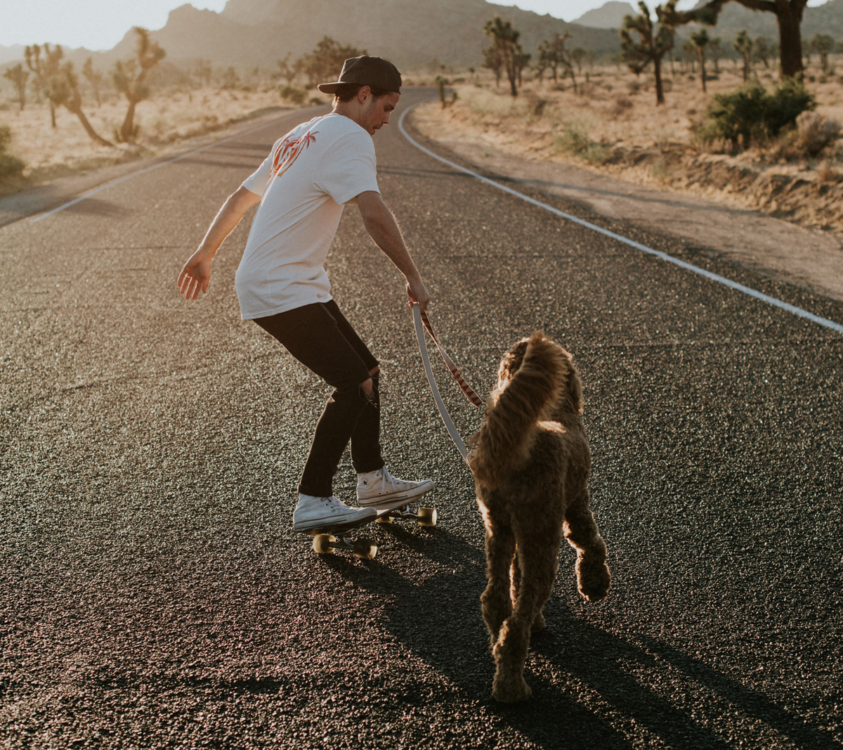 Picture of man skateboarding with dog on leash beside him.